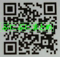 DSC_2572
