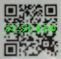 DSC_2575