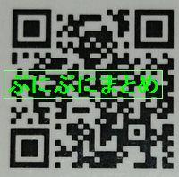 DSC_2592