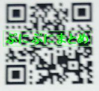 DSC_2599