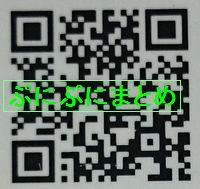 DSC_2608