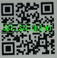 DSC_2609