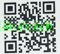 DSC_2619