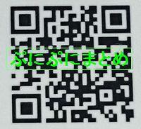 DSC_2625